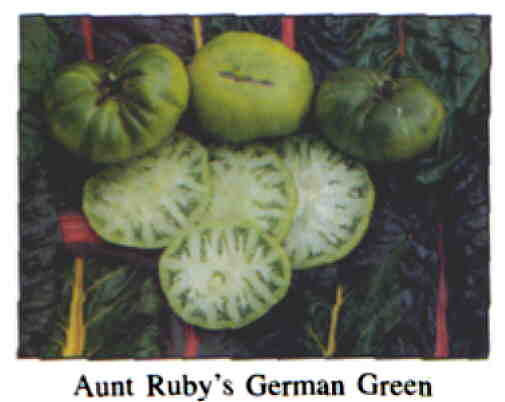 aunt rubies german green