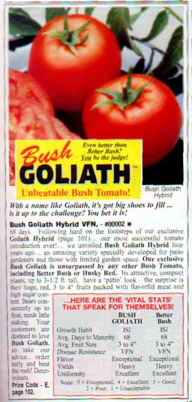 bush goliath