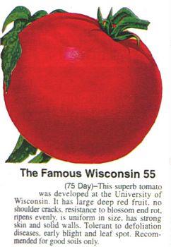 wisconsin 55